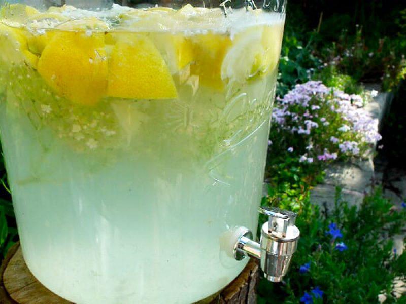 elder-flower-lemonade